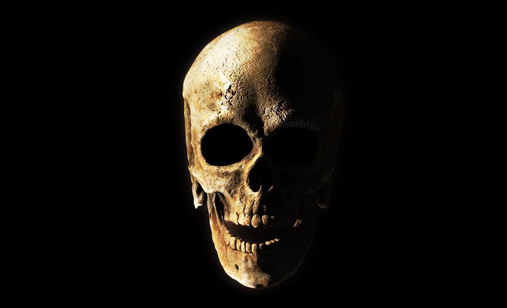 NoMoreRetake zbrush skull A