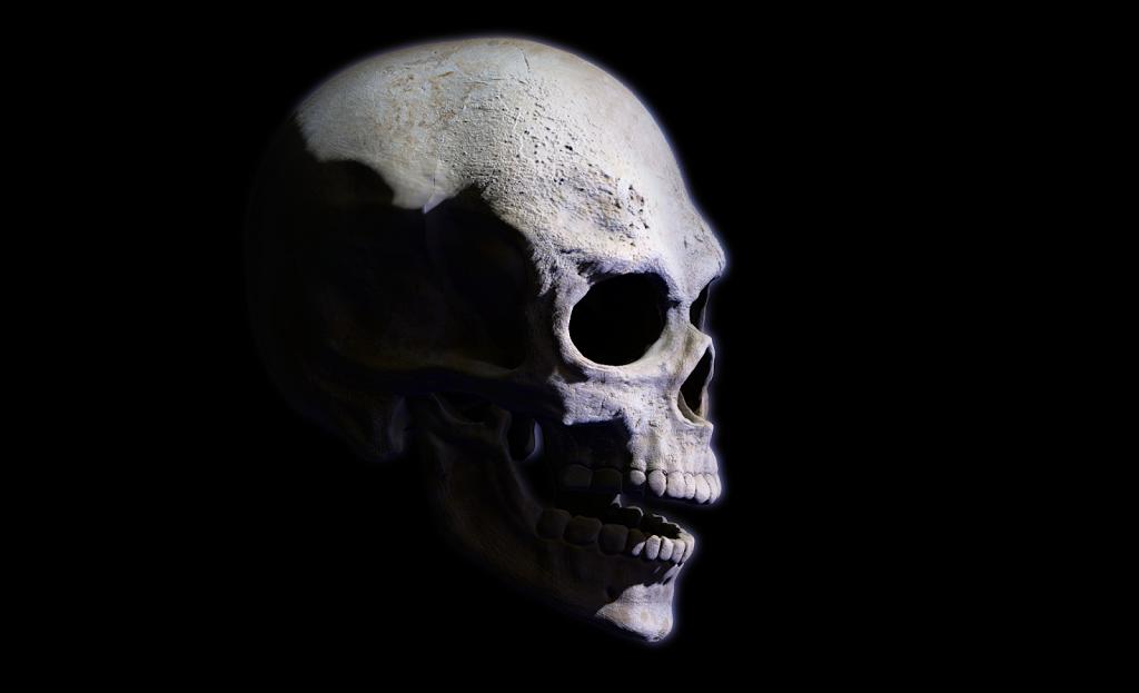 NoMoreRetake zbrush skull B